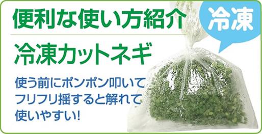 便利な使い方紹介【冷凍カットネギ】